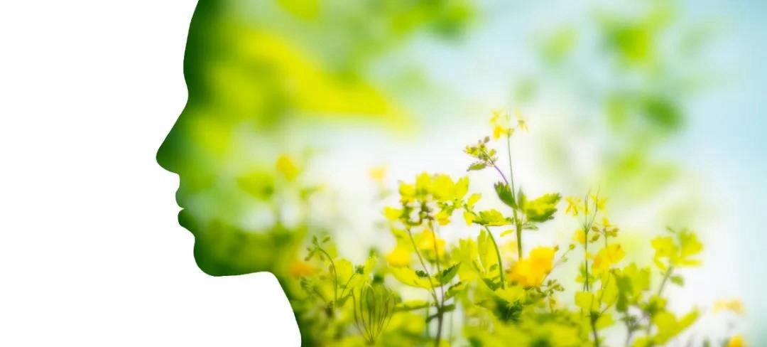 上海FIC  泛亚食品邀您共同见证科技在食品中的应用